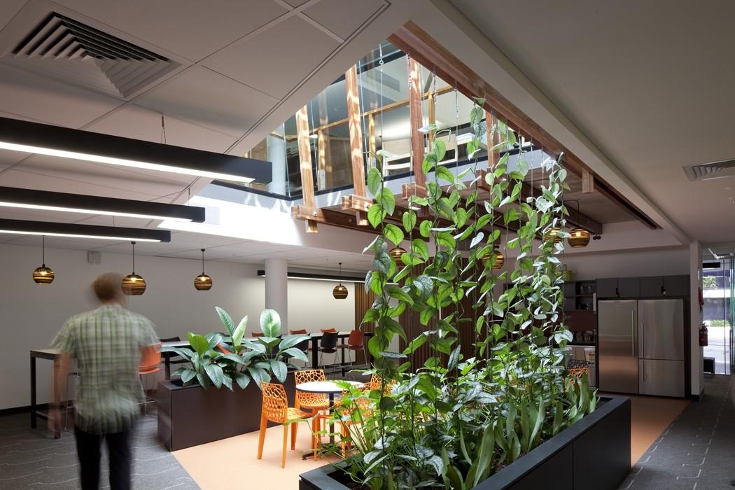 385 st pauls terrace reddog architects award winning architects