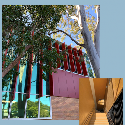 Cannon Hill Anglican College - D Block now open